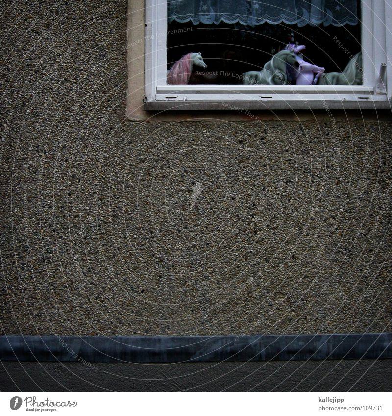 who´s gonna ride your wild horses kalt Wand Fenster Spielen Freiheit träumen Mauer Wärme Raum modern Kindheit Pferd Physik Spielzeug Statue Fensterscheibe