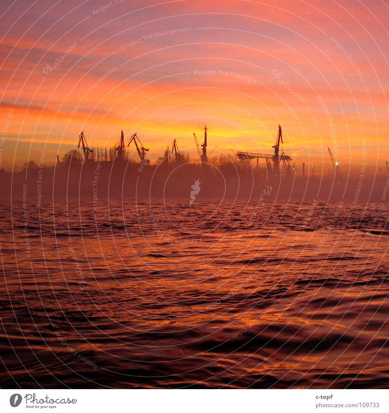 Cranes in Love Sonnenuntergang Hamburger Hafen Kran Romantik Meer Anlegestelle Nebel Abenddämmerung schön Himmel
