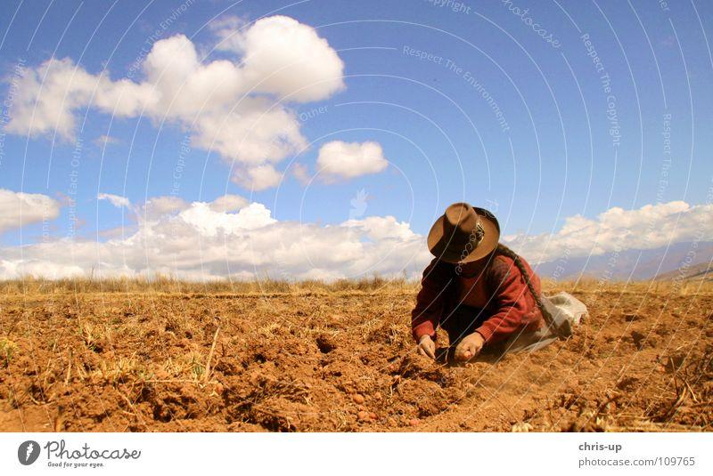 Kartoffelernte in Peru Mensch Frau Himmel Mann blau Ferien & Urlaub & Reisen weiß Freude Einsamkeit Wolken schwarz Landschaft gelb dunkel Berge u. Gebirge Haare & Frisuren