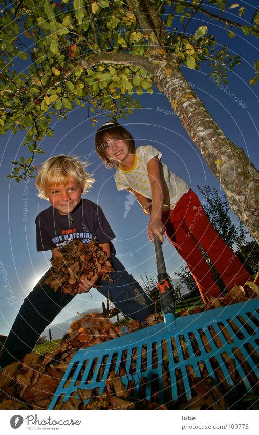 Herbstarbeit Blatt Kind Rechen Herbstlaub Laubbaum Baum Garten Park lachen herbstlich