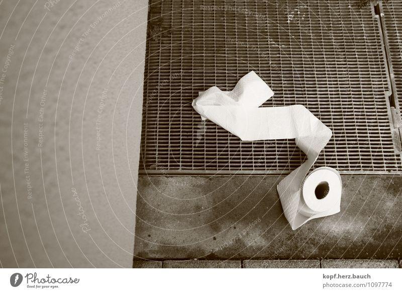 2-lagig & hochweiß Stadt Gesundheit rein Körperpflege Dienstleistungsgewerbe Toilette Erste Hilfe Überleben Notfall verschwenden Toilettenpapier Hilfsbereitschaft Darm