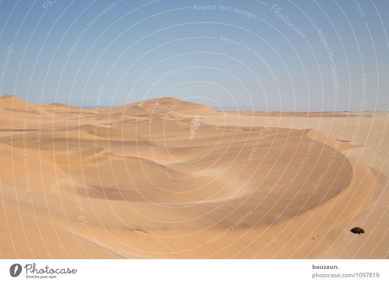 d. Himmel Natur Ferien & Urlaub & Reisen Sommer Landschaft Ferne Umwelt Wärme Freiheit Sand Horizont Erde Tourismus Klima Ausflug Schönes Wetter