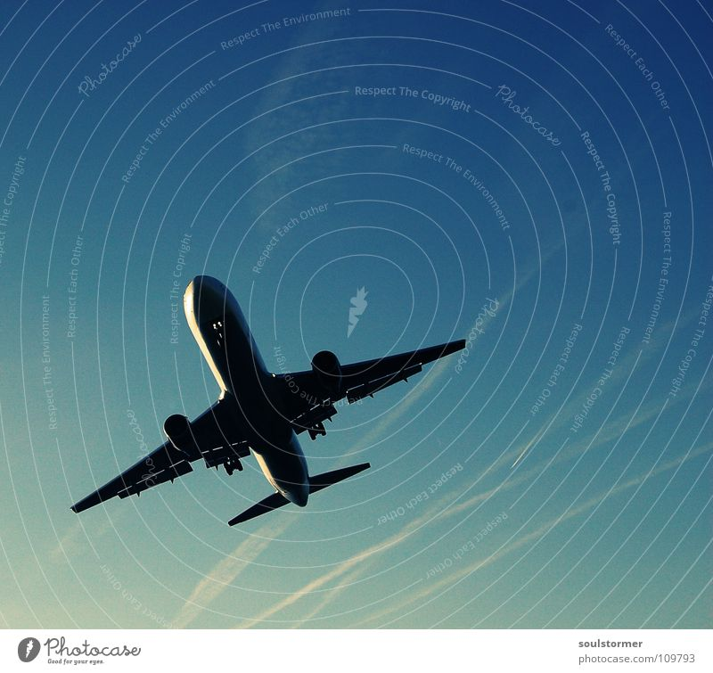Landeanflug Cross Processing Grünstich Gelbstich Flugzeug Flugzeuglandung Wolken Ferien & Urlaub & Reisen Erholung kommen braun zurück Triebwerke Fahrwerk Mitte