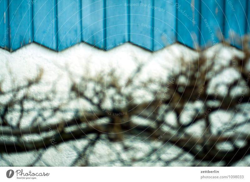 Für die Freunde dezenter Unschärfe Frühling Garten Schrebergarten Kleingartenkolonie Hecke Haus Gartenhaus Wand Zacken Holz Holzvertäfelung Einsamkeit