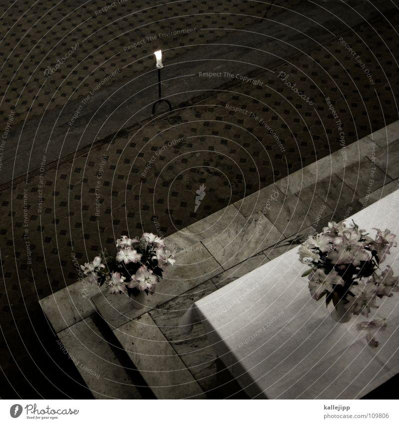amen Altar Gebet Religion & Glaube Götter Maria Beerdigung Trauer Gesang Orgel Blume Lilien Kerze kreuzigen Geistlicher Gotteshäuser Gottesdienst