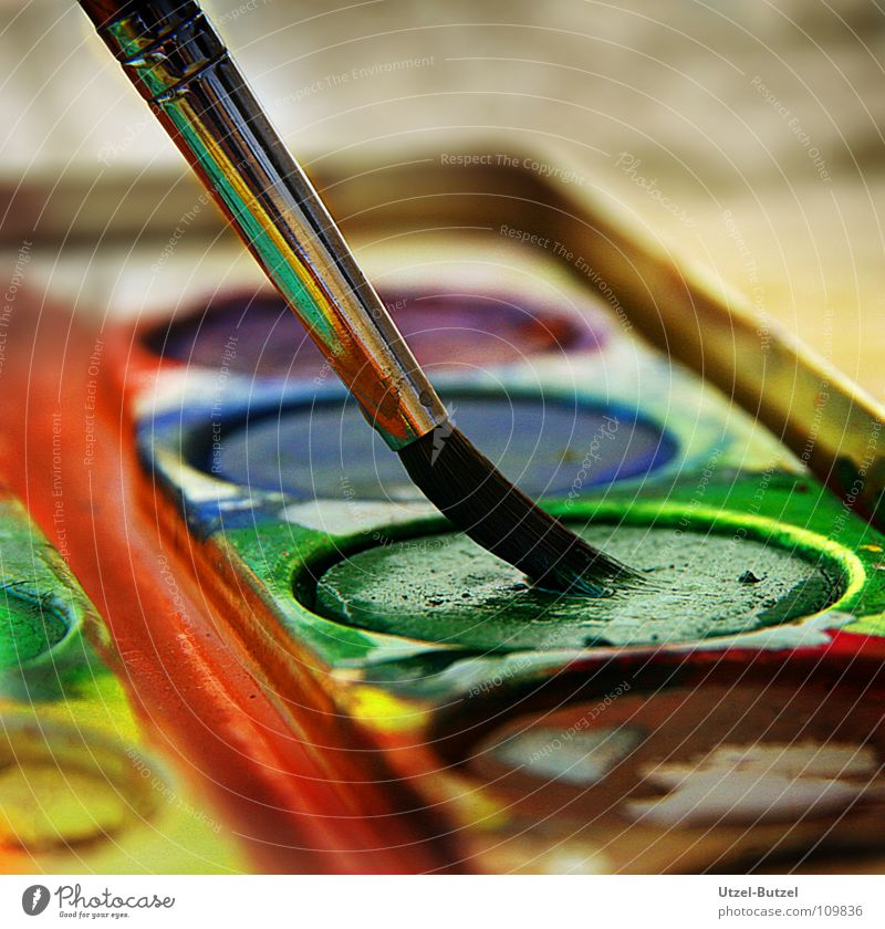 Farbkasten Kunst Wasserfarbe grün mehrfarbig Pinsel Makroaufnahme Freizeit & Hobby Kunsthandwerk Nahaufnahme Farbe Aquafarbe streichen zeichnen Anstreicher
