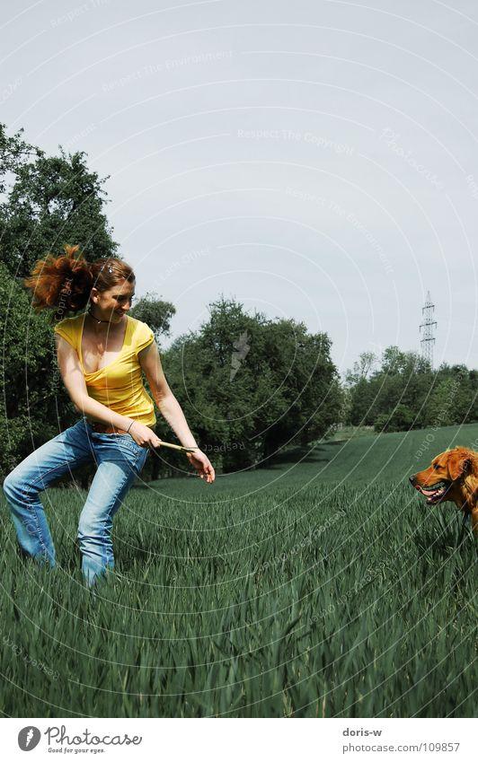 the walk with the dog Hund Golden Retriever Fell Frau rothaarig Sommersprossen gelb Feld Wiese Gras Baum Stock Freude Farbe Spielen laufen lachen Bewegung