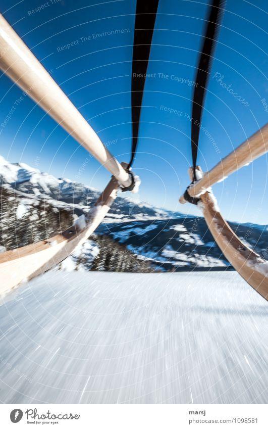 Winterspass! Natur Wolkenloser Himmel Schönes Wetter Schnee Berge u. Gebirge Schneebedeckte Gipfel kalt Freude Glück Euphorie Geschwindigkeit Rodeln Schlitten