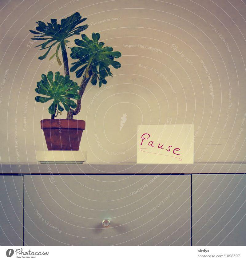 Streßbewältigung Ferien & Urlaub & Reisen ruhig Zeit Zufriedenheit Büro Häusliches Leben Ordnung Schilder & Markierungen Schriftzeichen ästhetisch einfach Pause