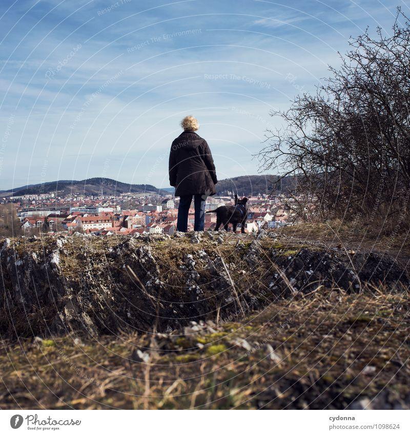 Überblick verschaffen Hund Mensch Frau Natur Erholung Ferne Erwachsene Leben Bewegung Senior Wege & Pfade Gesundheit Freiheit Felsen Freundschaft träumen