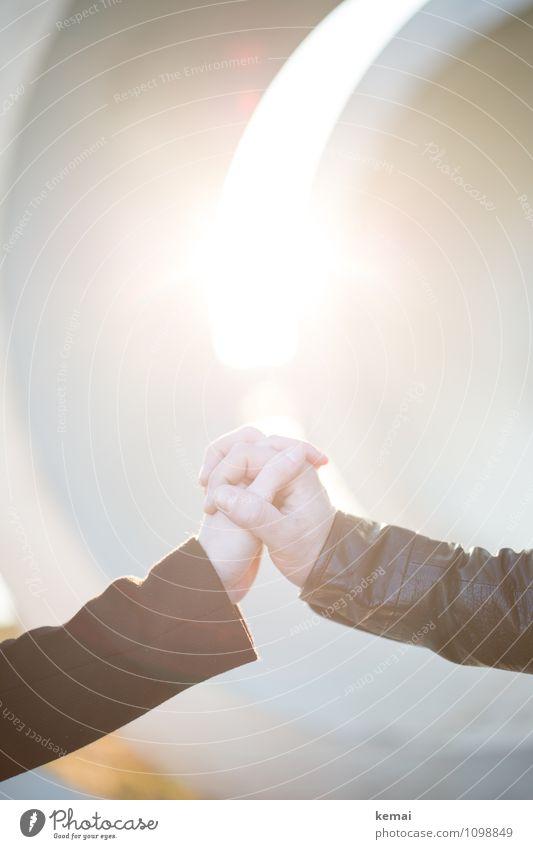 Hand drauf Mensch schön Leben Gefühle Liebe feminin Glück hell Paar Lifestyle Zusammensein Freundschaft maskulin Lebensfreude Finger
