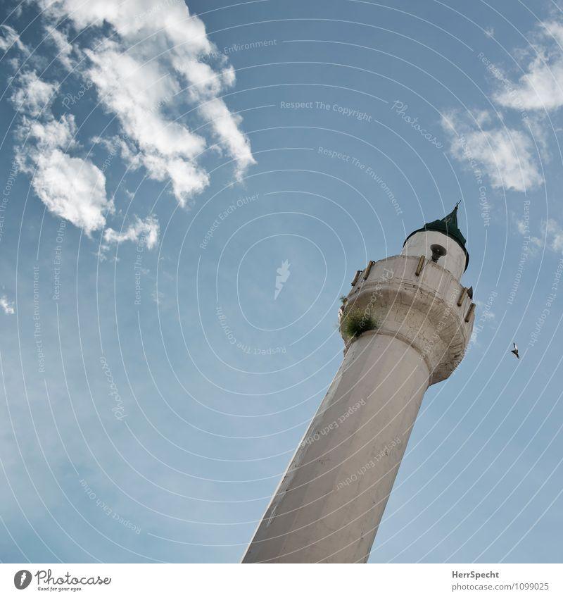 Gebetsmühle Istanbul Stadtzentrum Altstadt Turm Bauwerk Gebäude Zeichen hoch Islam Religion & Glaube Minarett Moschee Muezzin Vogel Wolken schieflage Neigung