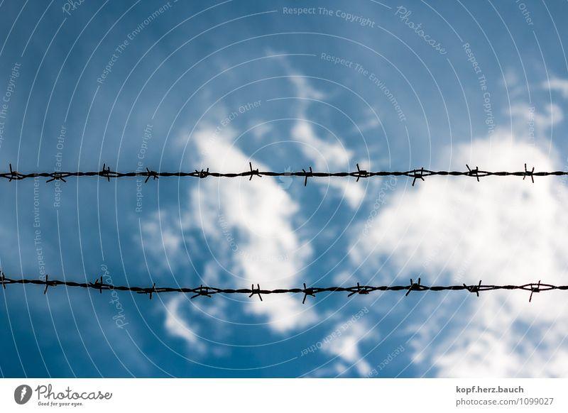stumpf Himmel Stacheldraht Sicherheit Schmerz Zukunftsangst gefährlich Verbote Zaun blau Barriere geschlossen horizontal Linie Farbfoto Außenaufnahme