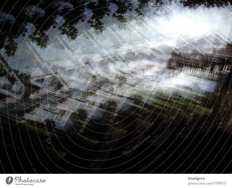 House Haus schwarz weiß Licht Baum Vorgarten Farbe bewegte Bilder Fotokunst