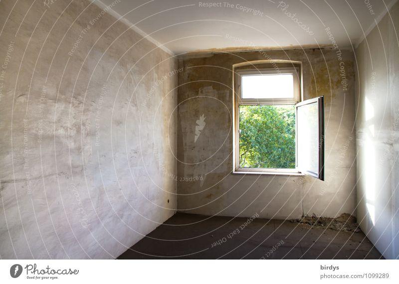 Ausweg gefunden Stadt Pflanze grün Ferne Fenster Innenarchitektur grau Wohnung Raum offen ästhetisch authentisch leer Hoffnung graphisch Baumkrone