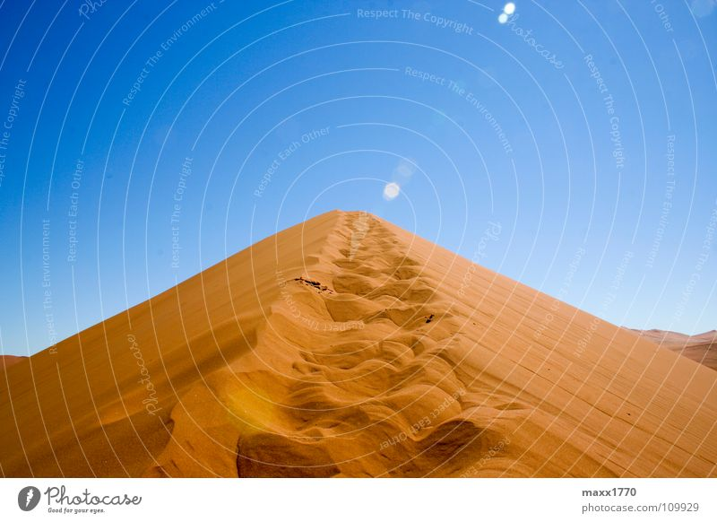 Dune 45 Namibia wandern Ferien & Urlaub & Reisen Afrika Stranddüne Wüste Sand