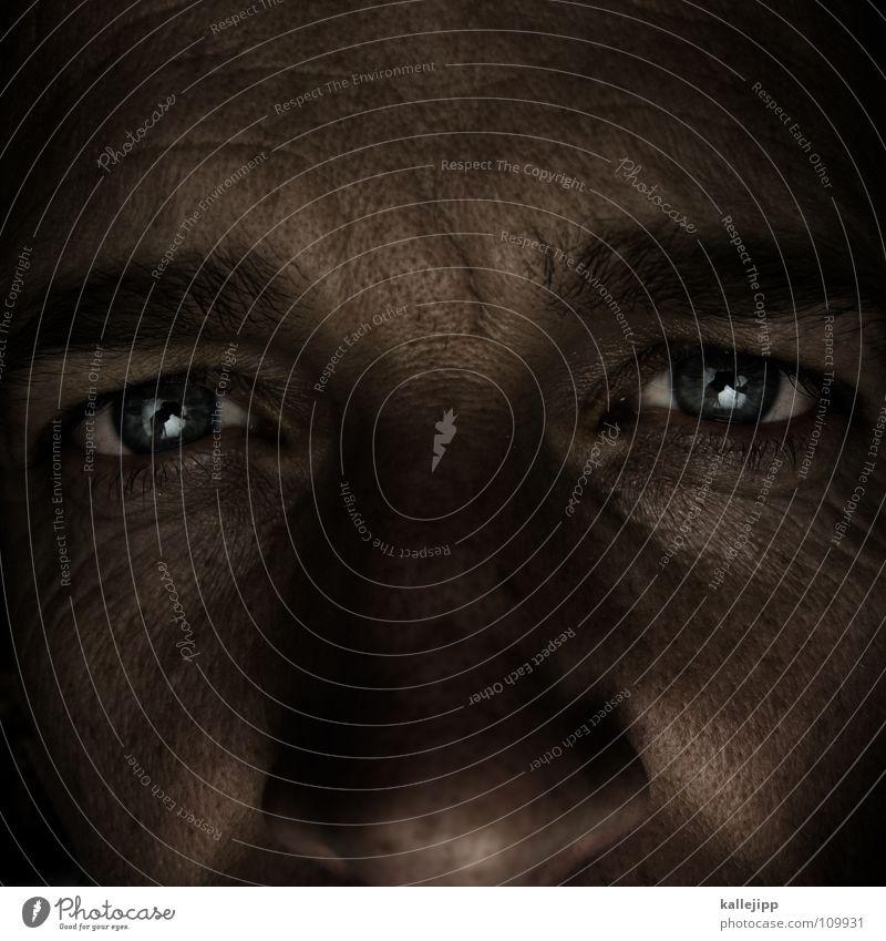 world in my eyes IV Mensch Mann blau Auge Leben Haare & Frisuren Haut Lebewesen Falte Sinnesorgane Sommersprossen Wimpern Augenbraue Linse Pupille