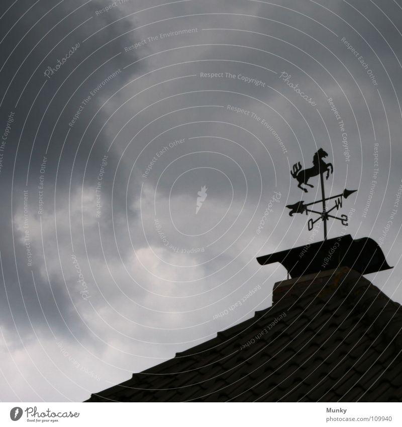 wo der Wind weht schwarz Wolken dunkel grau Metall Pferd Dach Backstein Richtung Schornstein Osten Stab Süden Westen