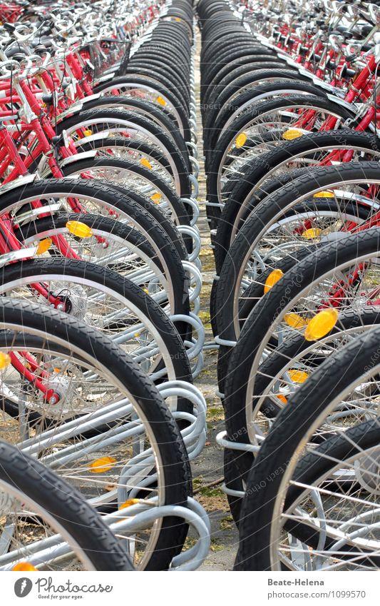 Die Saison ist eröffnet! Ferien & Urlaub & Reisen Erholung rot Freude schwarz gelb Bewegung Frühling Lifestyle Wetter Freizeit & Hobby Zufriedenheit Lebensfreude Fahrradfahren Fitness rund