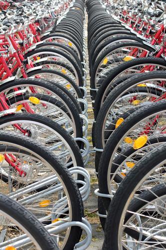 Die Saison ist eröffnet! Lifestyle Freizeit & Hobby Fahrradtour Fahrradfahren Frühling Wetter Verkehrsmittel Personenverkehr Stahl Bewegung