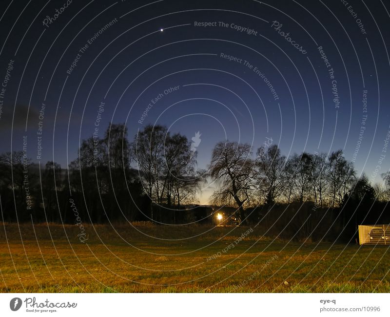 nachtlandschaft Stern Wald Nacht dunkel Wiese Beleuchtung Horizont Sternenhimmel