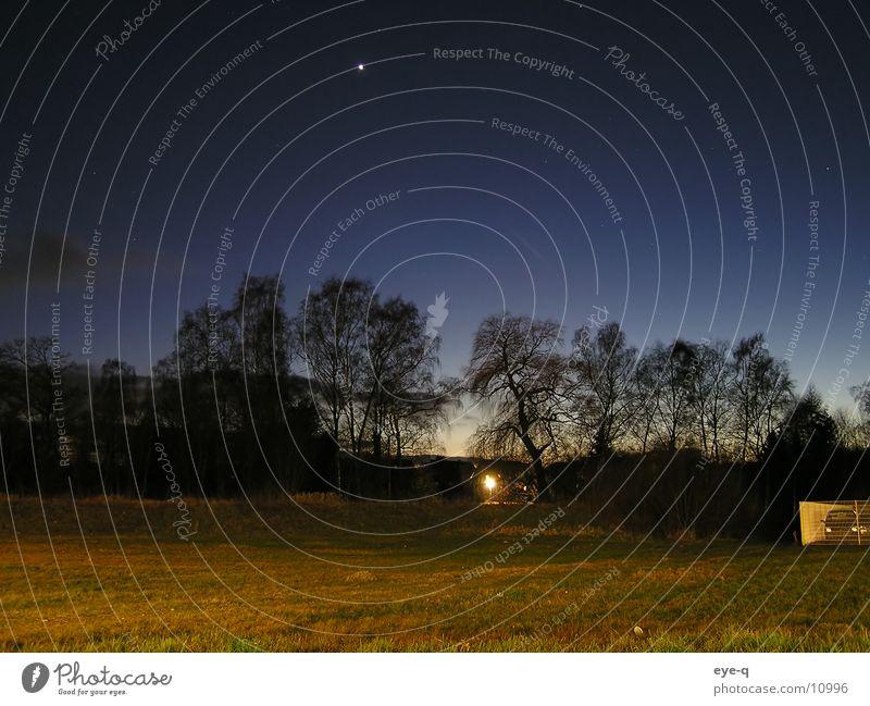 nachtlandschaft Wald dunkel Wiese Beleuchtung Stern Horizont Sternenhimmel