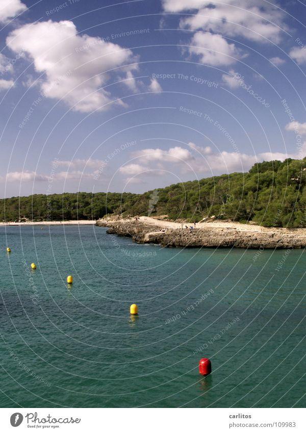 Zeitreise Himmel Wasser Baum rot Freude Strand Meer Ferien & Urlaub & Reisen Wolken Wald gelb Erholung Freiheit Glück Sand träumen