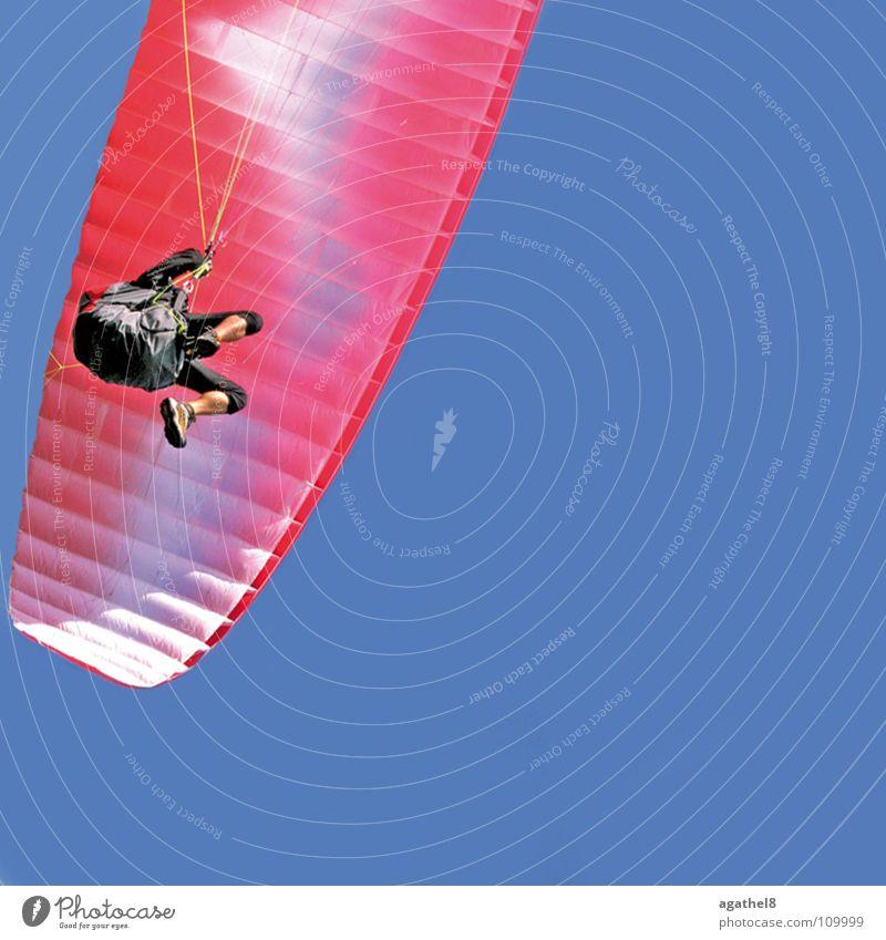 Überflieger Himmel blau rosa fliegen Luftverkehr Schönes Wetter Gleitschirmfliegen Funsport gleiten