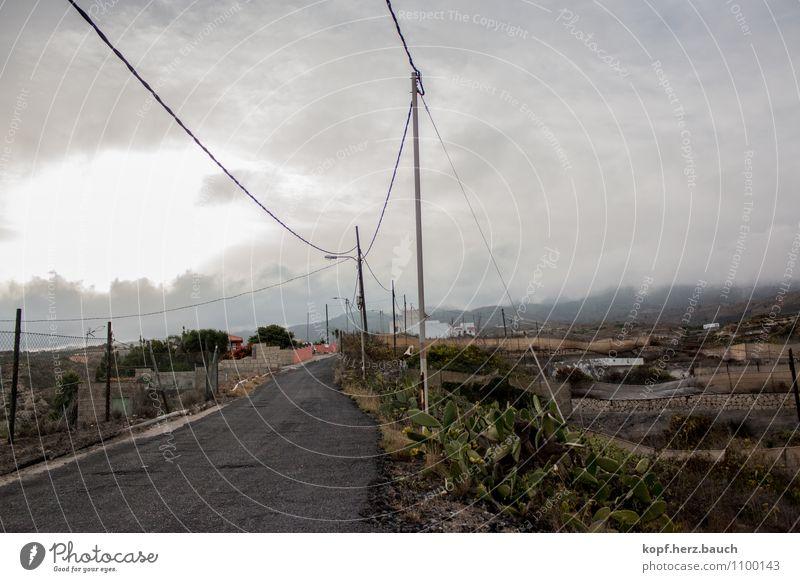 Nachhauseweg Landschaft Luft Wolken schlechtes Wetter Nebel Berge u. Gebirge Arico Teneriffa Dorf Verkehrswege Straße Wege & Pfade gefährlich Endzeitstimmung