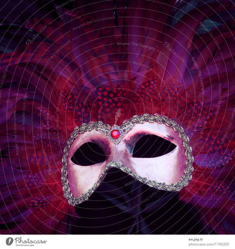 leer Ferien & Urlaub & Reisen schön rot Erotik Freude träumen elegant Tourismus Feder Fröhlichkeit verrückt fantastisch Lebensfreude Kreativität Kultur Romantik