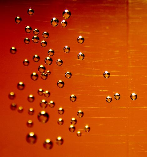 DROPS Wasserflasche Mineralwasser Sauerstoff Kohlensäure Lebewesen Wassertropfen Getränk Erfrischung prickeln PE-Flaschen erleuchten herzförmig Momentaufnahme