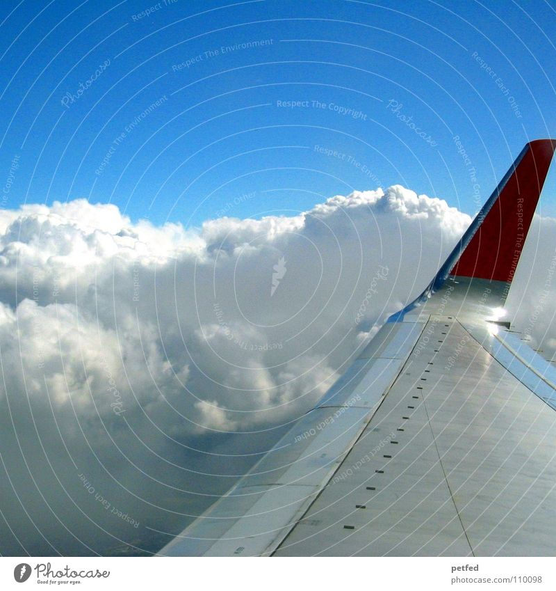 On my way to America Himmel weiß blau rot Ferien & Urlaub & Reisen Wolken Luft Erde Flugzeug hoch Luftverkehr USA Flügel Flughafen Amerika Schweben