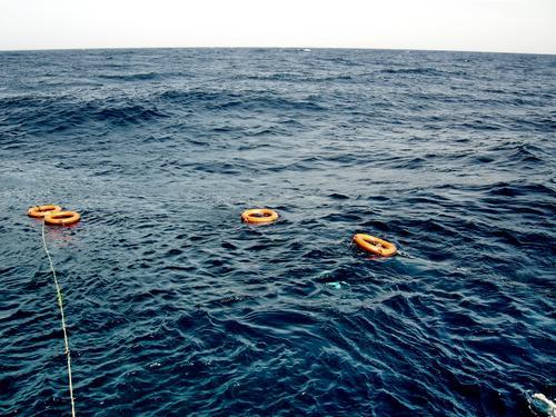 S.O.S. Rettung Meer ertrinken untergehen Notfall Rettungsring See notleidend Notsituation Meerwasser Küste Unterwasseraufnahme tauchen Rettungsschwimmer Panik