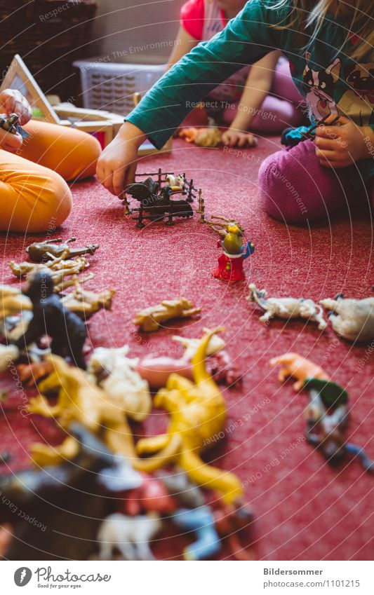 Qualitätszeit Spielen Kinderspiel Gummitier Spielzeugtiere Kinderzimmer Kindererziehung Bildung Wissenschaften Kindergarten lernen Studium Pädagogik feminin