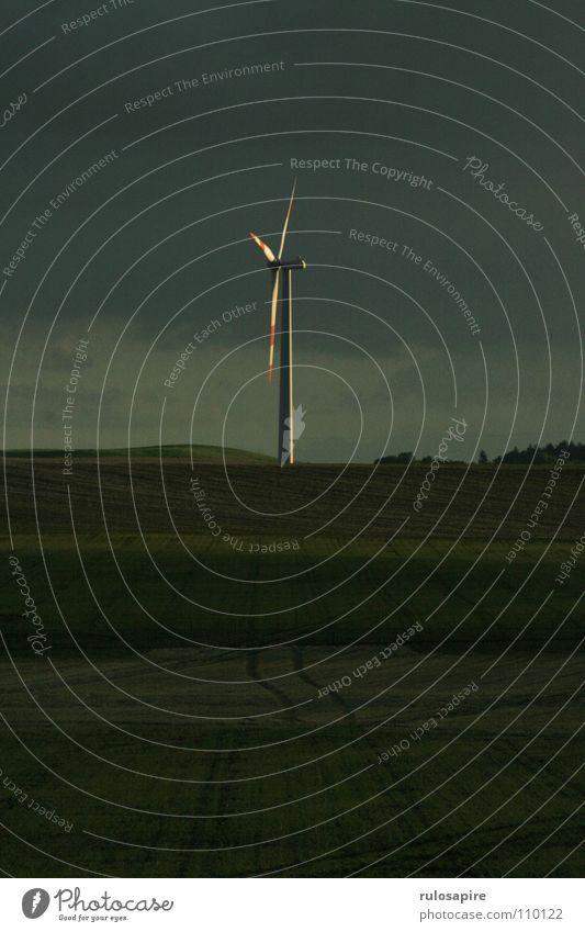 Wind of Change Sonnenuntergang Feld grün Elektrisches Gerät Technik & Technologie Windkraftanlage Energiewirtschaft