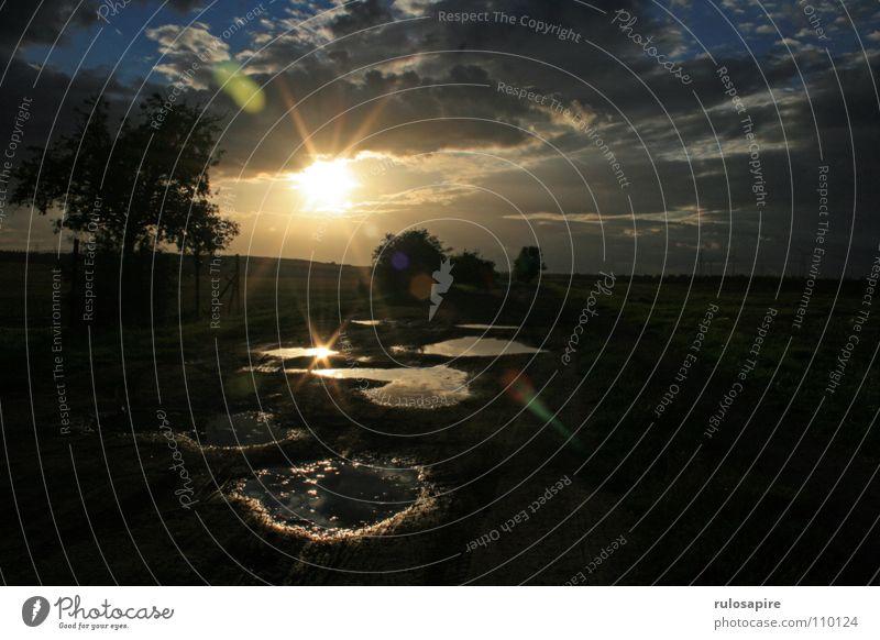 Sonnenspiegelei #2 Sonnenuntergang Pfütze Himmel Wolken sun Wege & Pfade path Wasser sky cloud