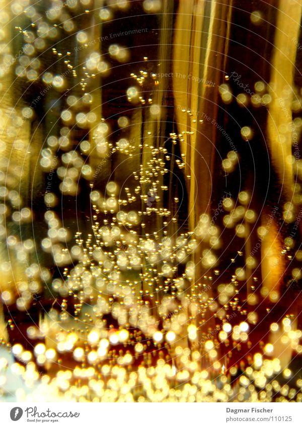 Danziger Goldwasser... Weihnachten & Advent schön schwarz kalt Stil Feste & Feiern Lebensmittel glänzend Luft leuchten Dekoration & Verzierung Textfreiraum Glas