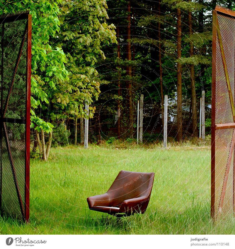 Dazwischen Zaun Sessel Wiese Wald Grundstück Grenze oben Sitzgelegenheit grün braun Farbe Möbel Tor offen dazwischen