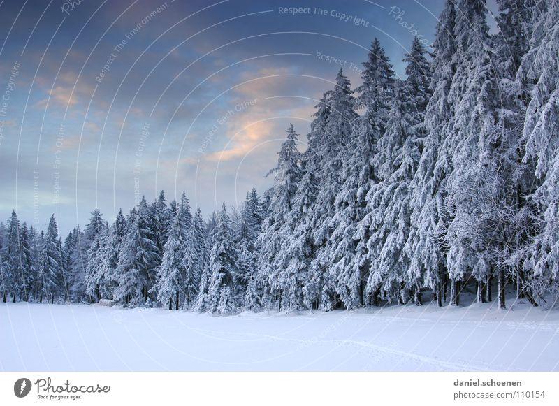 Weihnachtskarte 10 Himmel Natur blau weiß Ferien & Urlaub & Reisen Winter Einsamkeit Wolken Wald dunkel Schnee grau Wetter Hintergrundbild Freizeit & Hobby