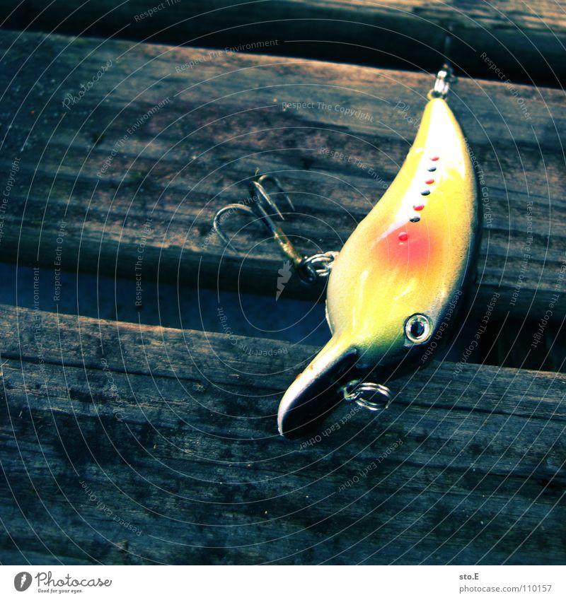 angeln pt.4 Angelrute Angeln Schnur Angler Kreis rund See Gewässer ruhig Osten Nachmittag Wasserfahrzeug Ruderboot Muster Ordnung Körperhaltung Haken Angelköder