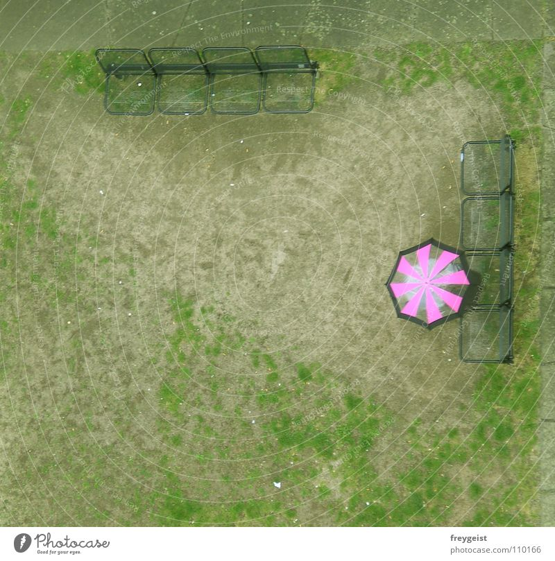 Pink rosa Regenschirm Wiese Bank grün Detailaufnahme Turm Aussicht gießen umbrella