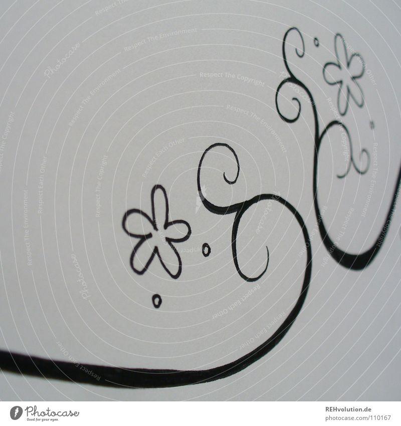 Blümchenkringel schwarz weiß Entwurf Gemälde Kreis geschwungen Wachstum Ranke filigran fein schwungvoll nah Schreibstift Papier Block Blume Blüte Schnörkel