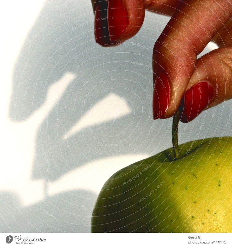 Berührungsangst Mensch rot Ernährung Lebensmittel braun Frucht Haut Finger süß Spitze Bild Güterverkehr & Logistik Apfel festhalten berühren Stengel