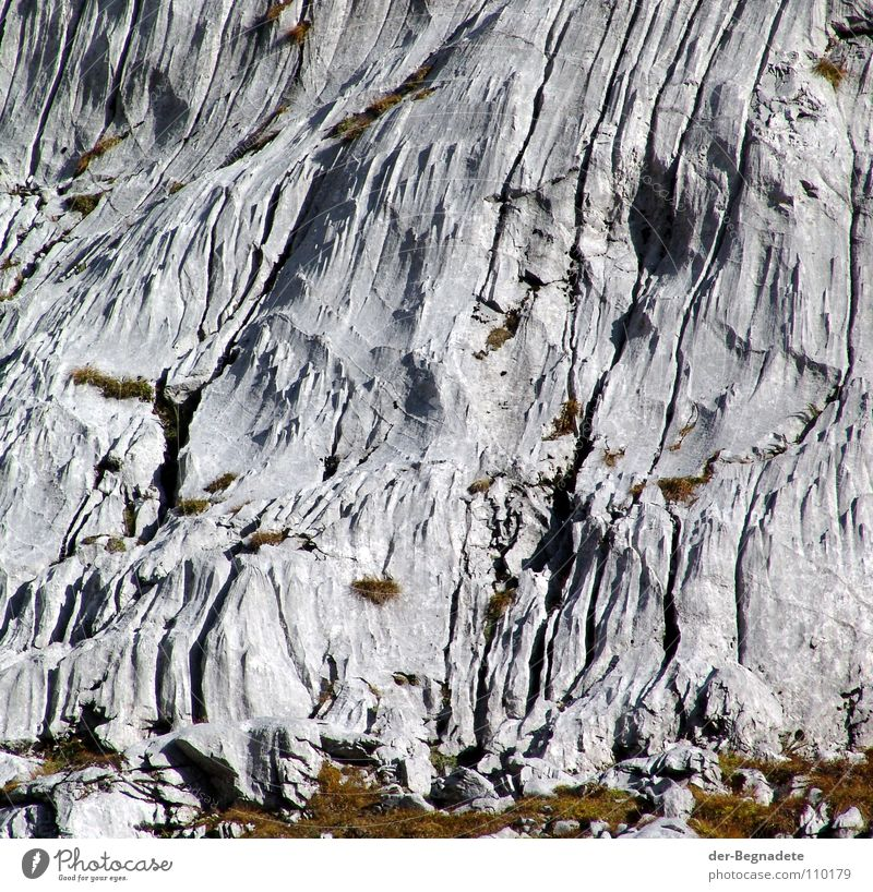 Eisgeformt weiß grün Ferien & Urlaub & Reisen Berge u. Gebirge Herbst Gras grau braun Felsen Freizeit & Hobby wandern trist Alpen Hügel Spuren