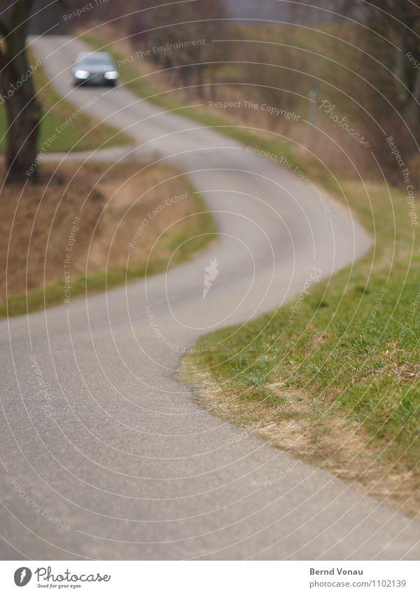 Gegenlichtmeeting Verkehr Verkehrswege Autofahren Straße Wege & Pfade Fahrzeug PKW braun grau grün Verabredung Gegenverkehr eng Kurve Gras Baum Landwirtschaft