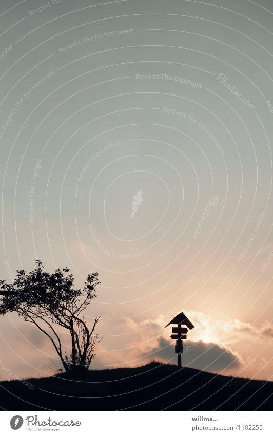 Wegweiser für Wanderer Wegekreuz Erzgebirge Hirtstein wegweisend Sträucher Wolkenformation Menschenleer Abend Dämmerung Silhouette Gegenlicht Natur Textfreiraum