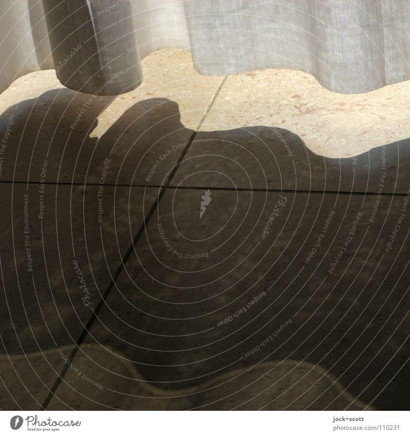 Separator Ferien & Urlaub & Reisen Sommer Wärme Innenarchitektur Linie elegant Wellen Häusliches Leben Dekoration & Verzierung modern Klima Sauberkeit Schutz