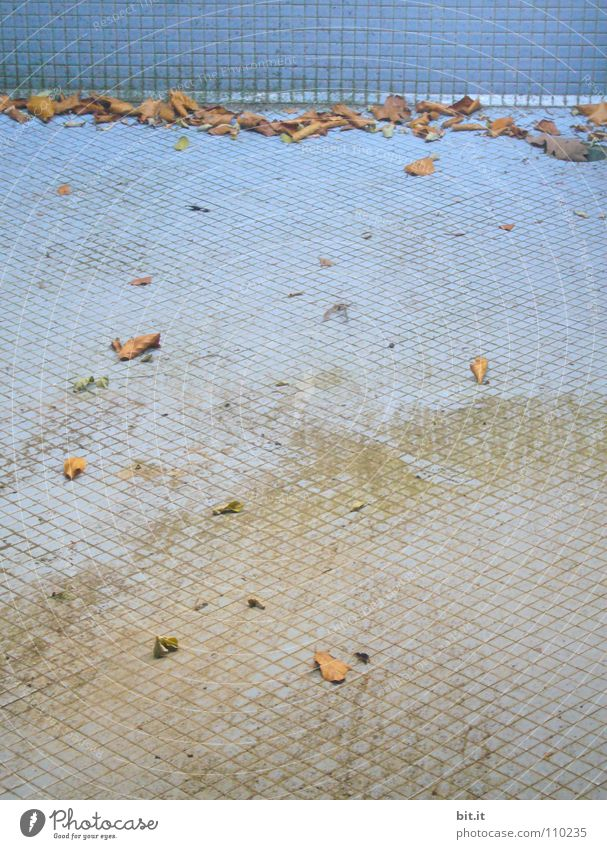 TROCKENKNUT-ÜBUNG blau Blatt Einsamkeit Ferne Straße kalt Wand Herbst Wege & Pfade Sand braun liegen geschlossen leer Boden Bodenbelag