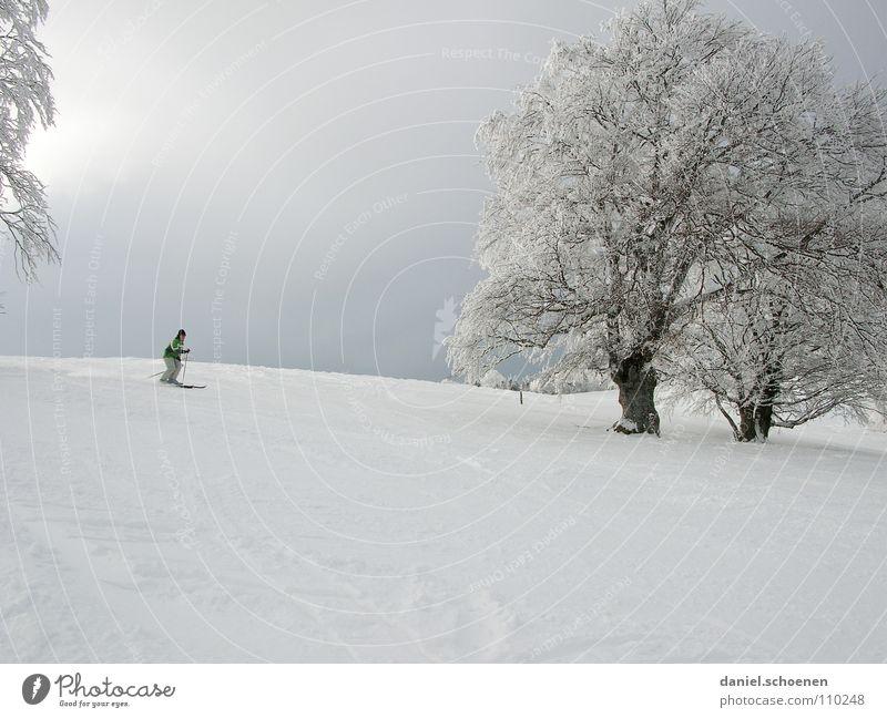 die Ski schon aus dem Keller geholt ? Himmel weiß Baum Sonne Freude Winter Ferien & Urlaub & Reisen kalt Schnee grau Landschaft hell Beleuchtung wandern Wind