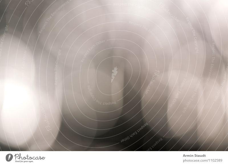 Bokehhhh! weiß Ferne schwarz Beleuchtung Stil Hintergrundbild grau außergewöhnlich Stimmung glänzend Design träumen leuchten elegant Fröhlichkeit ästhetisch